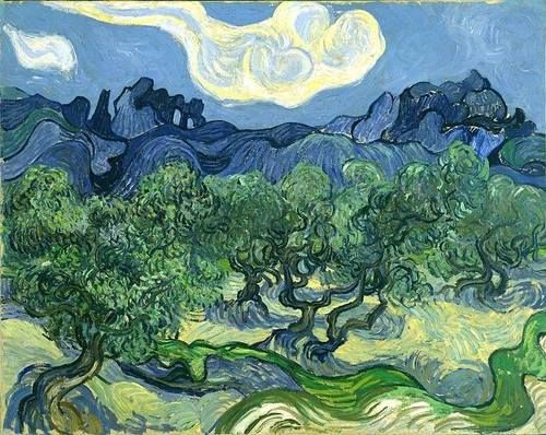 colin-vian:  Vincent van Gogh - The Olive Trees, (1889)