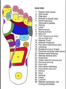 My Story: Titik refleksi kesehatan pada tangan dan kaki