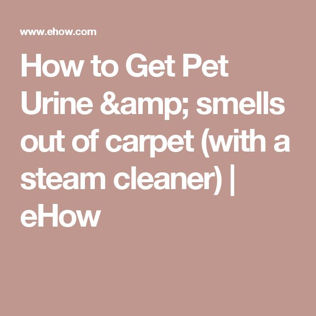 How to Get Pet Urine & smells out of carpet (with a steam cleaner) | eHow