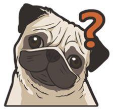 Hi! Pug - LINE Creators' Stickers