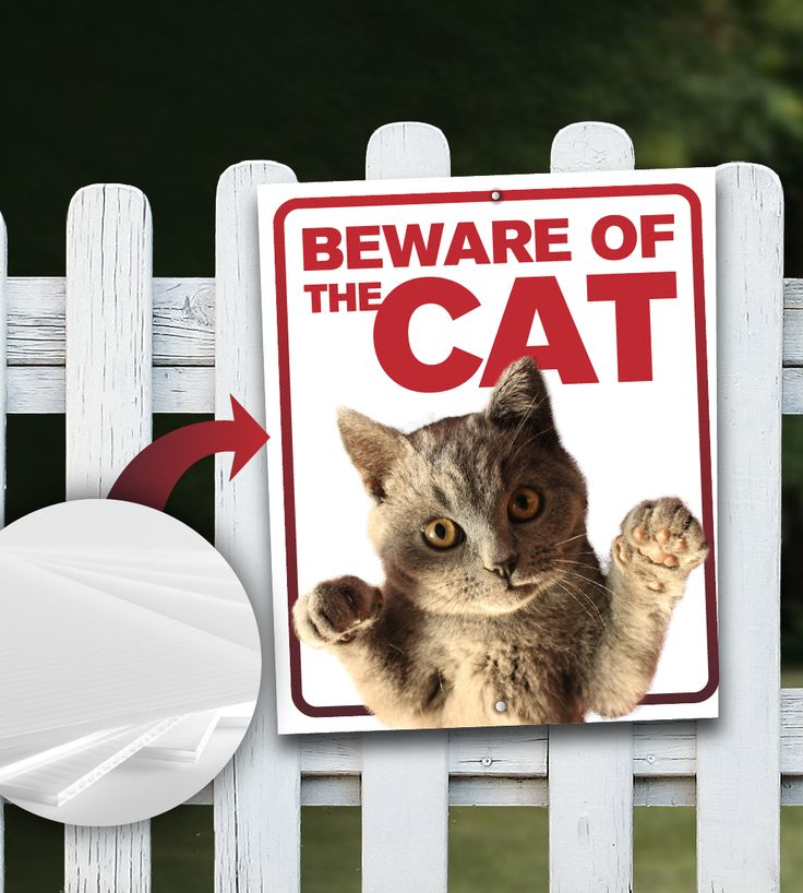 Sign printed on High quality coroplast. Order with grommets for quick installation. Free shipping Canada and USA #cat #sign #beware