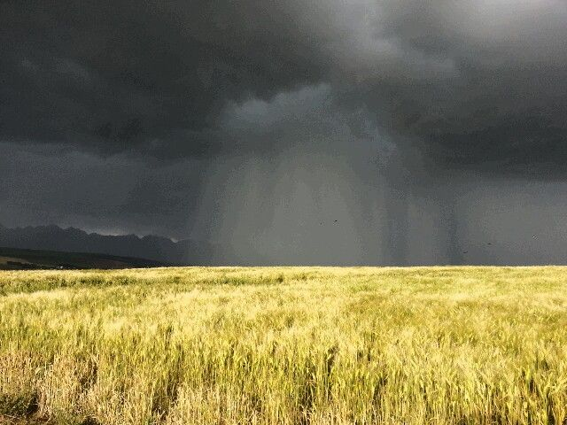 Thunderstorm in the Overberg