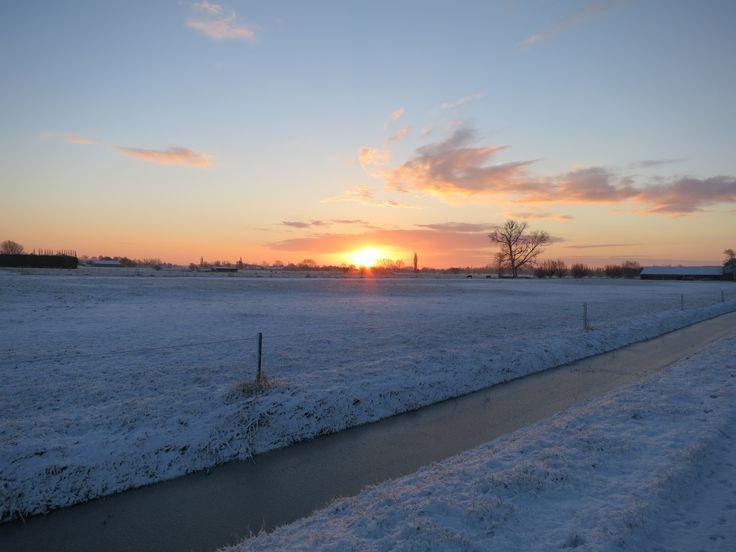 De zon die op komt tussen de weilanden.