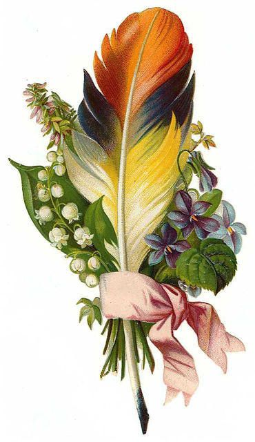 Victorian Flowers and feather