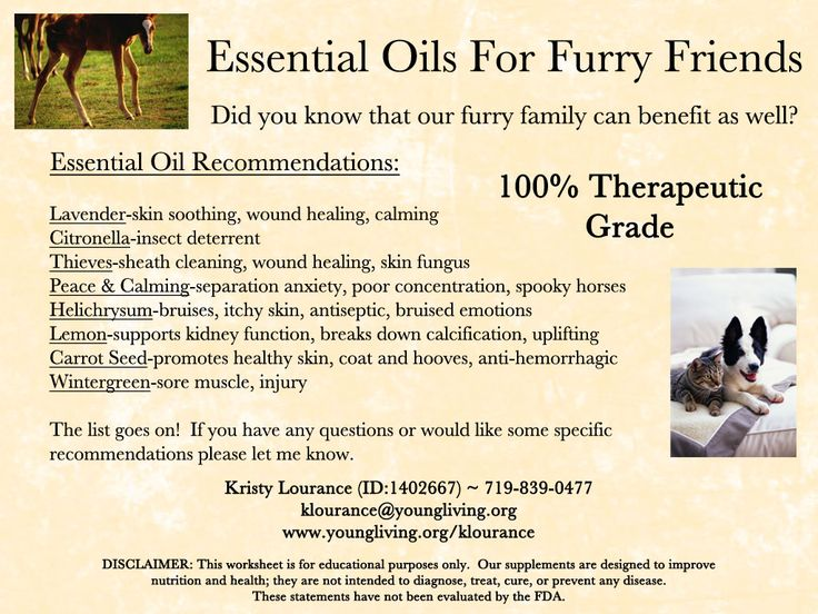 Young Living Essential Oils for our furry family--- thinking I need some Peace & Calming Essential Oil for my two girls!