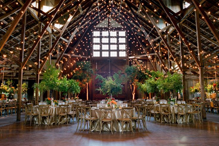 Magic forest barn wedding reception with tall green tree centerpieces on gold wedding tables underneath market lights. Design by Waterlily Pond Studio www.waterlilypond.... Santa Lucia Preserve, Carmel Valley. Tanja Lippert Photography