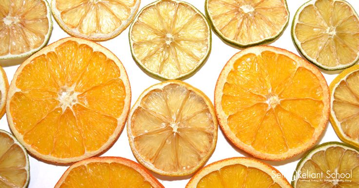 Step-by-step directions for how to dehydrate citrus slices. I also compare the Excalibur dehydrator to the Nesco/American Harvest.