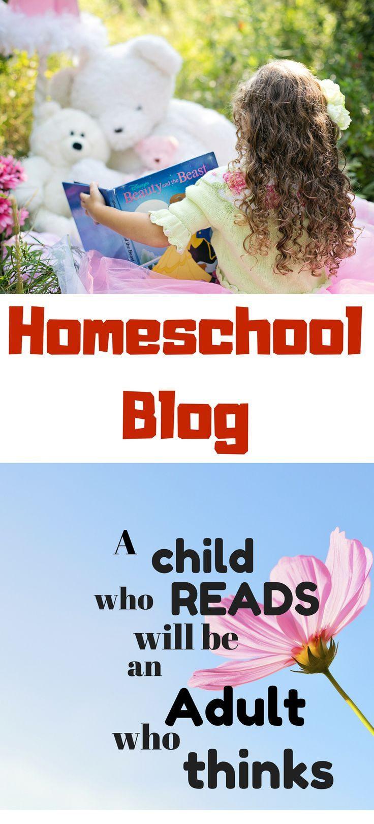 New Homeschooling Blog Please Come On Over To Check Us Out