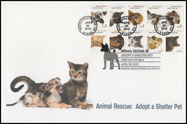 Block Includes: 4451 Wire-haired Jack Russell terrier / 4452 Maltese cat / 4453 Calico cat / 4454 Yellow Labrador retreiver / 4455 Golden retreiver / 4456 Grey, white & tan cat / 4457 Black, white & tan cat  / 4458 Australian shepherd / 4459 Boston terrier and 4460 Orange tabby cat. Envelope measures 6 x 9 and have description of the stamp subject printed on the back. IS IN MINT, UNADDRESSED CONDITION.