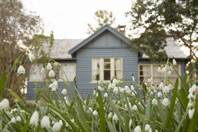 Camellia cottage, Berry. Available 30 Dec- 13 January. $3235 = $115 per family per night. I am slightly concerned that this is so cheap - maybe it's really small or really basic.