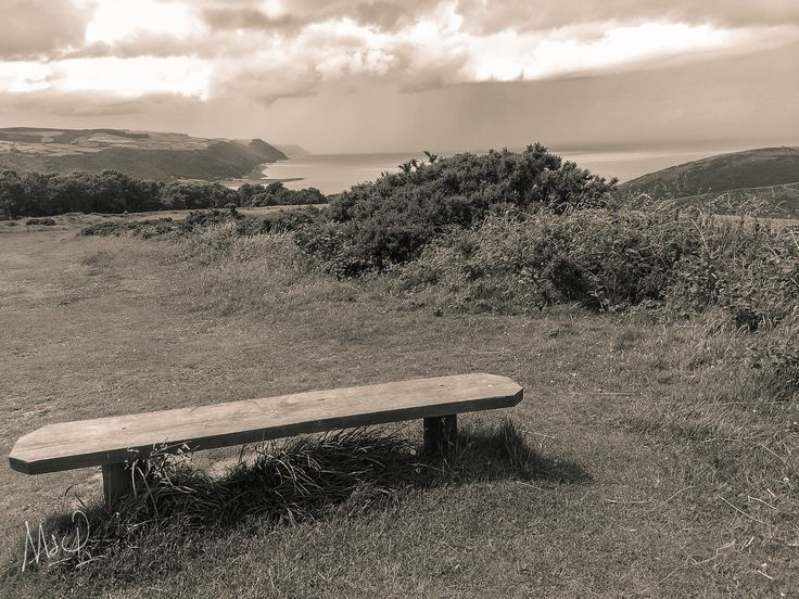 NewPhoto : Best seat in the Park?   For more images from #Exmoor by Mark www.exmoor.photography