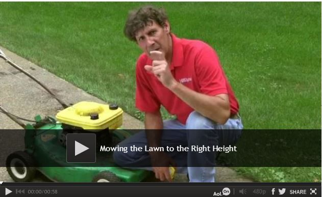 #Video: Mowing the Lawn to the Right Height There is more to a healthy lawn than watering and fertilizing. The Family Handyman Senior Editor, Travis Larson, will show you how to determine what height is optimal for cutting your grass. Each type of grass has a recommended cutting height. Watch: http://www.familyhandyman.com/landscaping/lawn-care/mowing-the-lawn-to-the-right-height