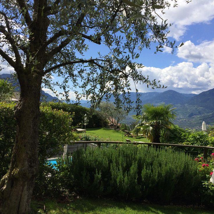 Blick über das Etschtal, hoch über Meran. Diesen Blick bietet das Wellnesshotel Erika in Dorf Tirol