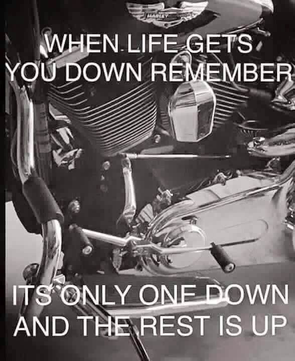 Harley Davidson Quotes 231 Best Harleys Images On Pinterest  Motorcycle Biker Quotes And