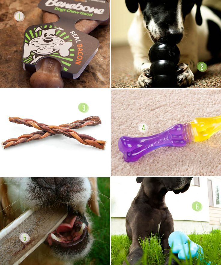 Six great chews for teething puppies. Those sharp puppy teeth are perfect for destruction! Make sure you have chews, so they won't go looking for shoes!