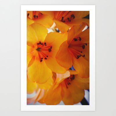 Kew Garden Art Print by anasu007 - $18.22