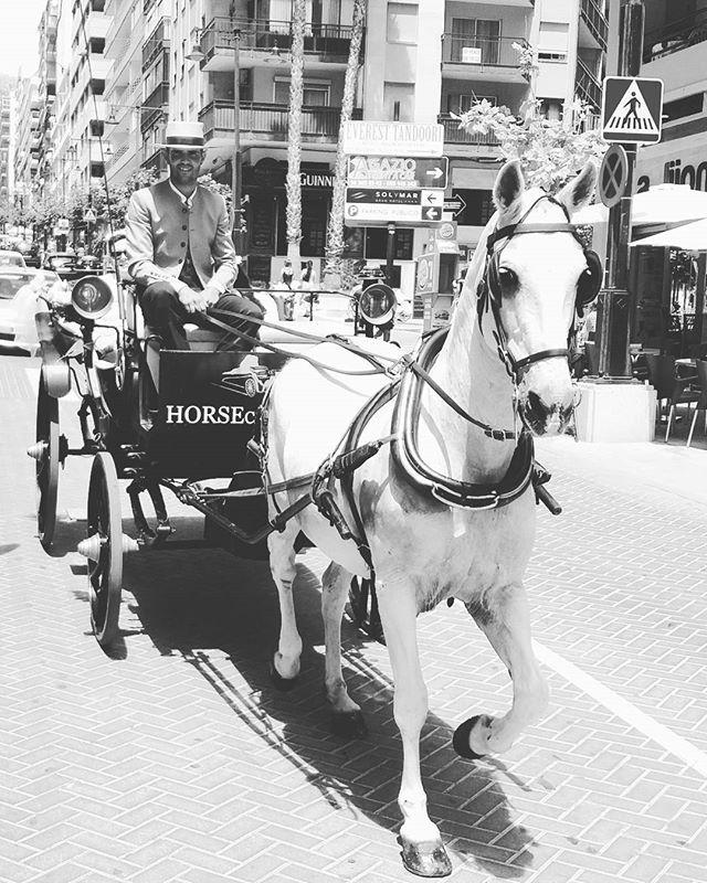 #salinas #descubre #horsecarstour #calp #calpe #turismo  #infoturismo #turistic #ifach #alicante #valencia #playa #arenal #plazacolon  #restaurant #restaurantes  #hotel #hoteles #horse #caballo #tour #walking #trips #suitopia #suitopiahotel  #suitopiahotelcalpe #suitopiaspecialevent #solymarhotel #diamantehotel #hotelesmeralda #montereylocals #salinaslocals- posted by HORSE CARS TOUR https://www.instagram.com/horsecarstour - See more of Salinas, CA at http://salinaslocals.com