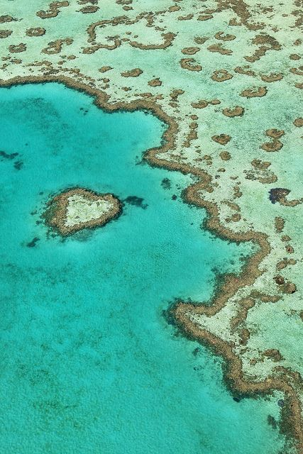Heart Reef,  Great Barrier Reef, Queensland, Australia