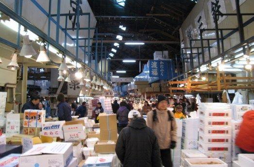 Tourist information. Tsukiji Fish Market