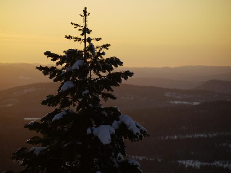 #Trysil #Norway #ski 2011 #winter