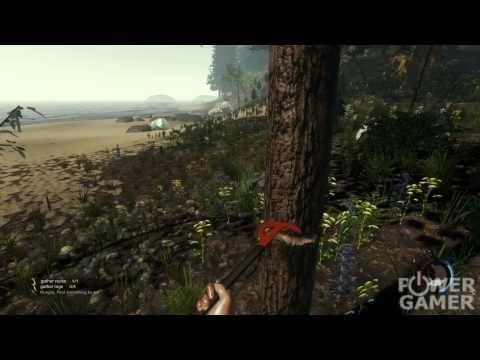 The Forest - Quicklook Alleine am Strand mit Möwen als deine einzigen Freunde. Haben wir es überlebt? Seht es hier in unserem Quicklook zu the Forest.