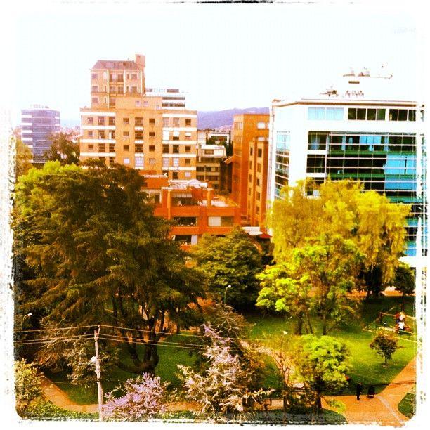 """Park... #instagramyourcity for Bogota. @smwbog"" by @tatigonza"