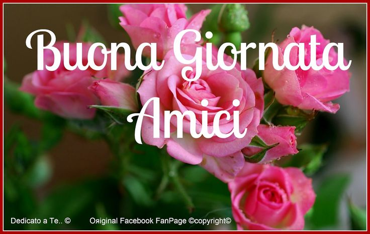 Buona Giornata Amici.. have a safe holiday weekend for those living in the US.