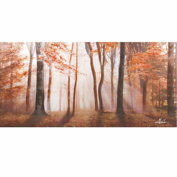 Yosemite Home Decor Breaking In The View Original Hand-Painted Wall Art