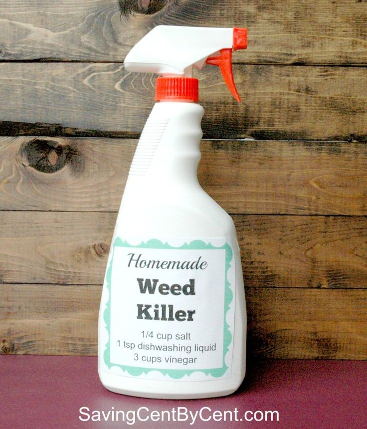 Using natural weed killers when we can just makes good sense. After all, it's not just you, your pets and your kids being exposed to chemicals you spray. Ok, so you want to know how to make safe homemade weed killer? Good,  you should. So do we. So lets check out these tutorials and homemade weed killer recipes!