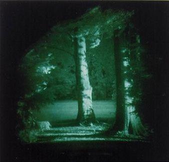 Thomas Ruff, Nacht 14 II (1994)