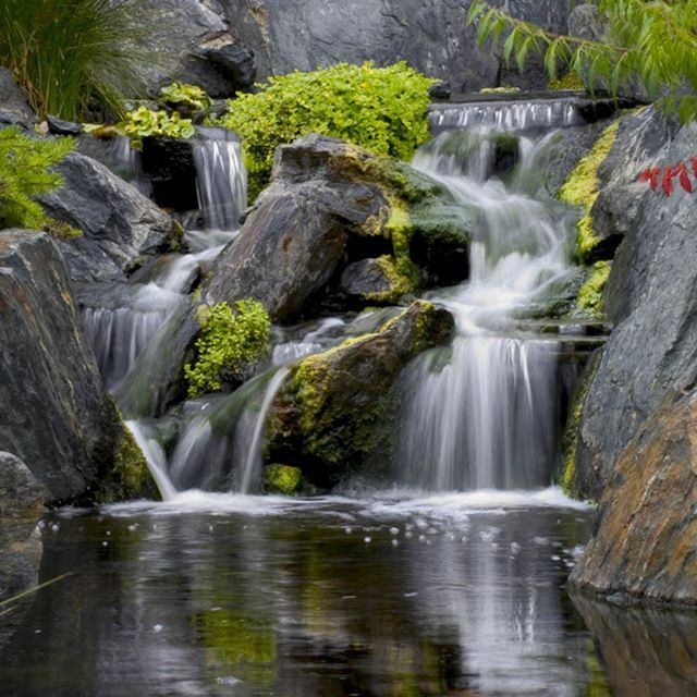 956 best images about water features ponds on pinterest for Wooden pond waterfalls