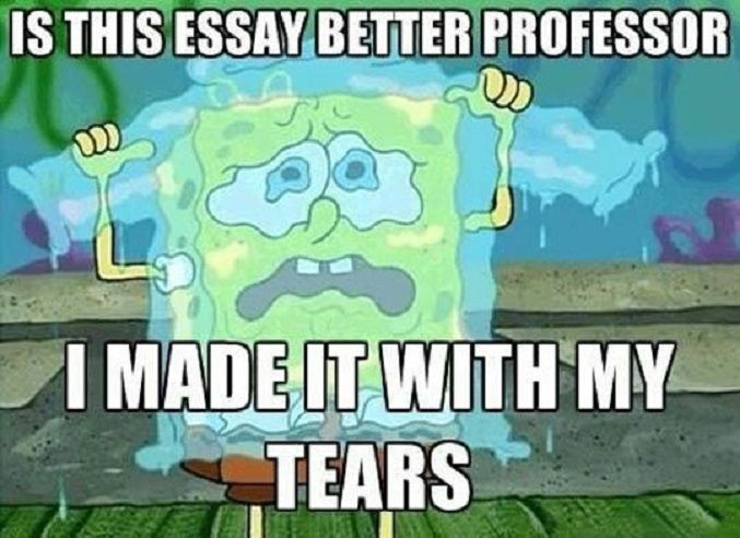 Essay Meme #Professor, #Tears Don't want to burn the midnight oil? Ask us to help with your #essay here: https://qualityessays.co.uk/order.html