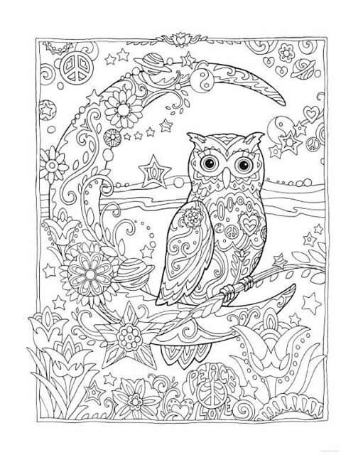 Creative Haven Owls Colouring Book By Marjorie Sarnat