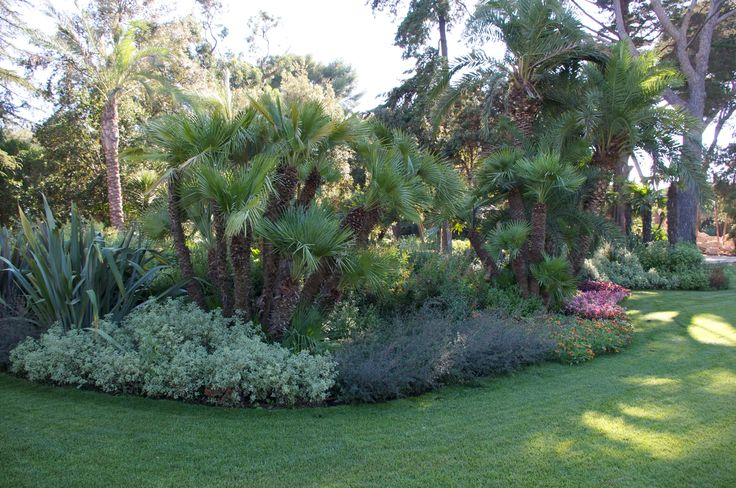 Massif avec ambiance exotique nos jardins pinterest for Ambiance jardin paysagiste