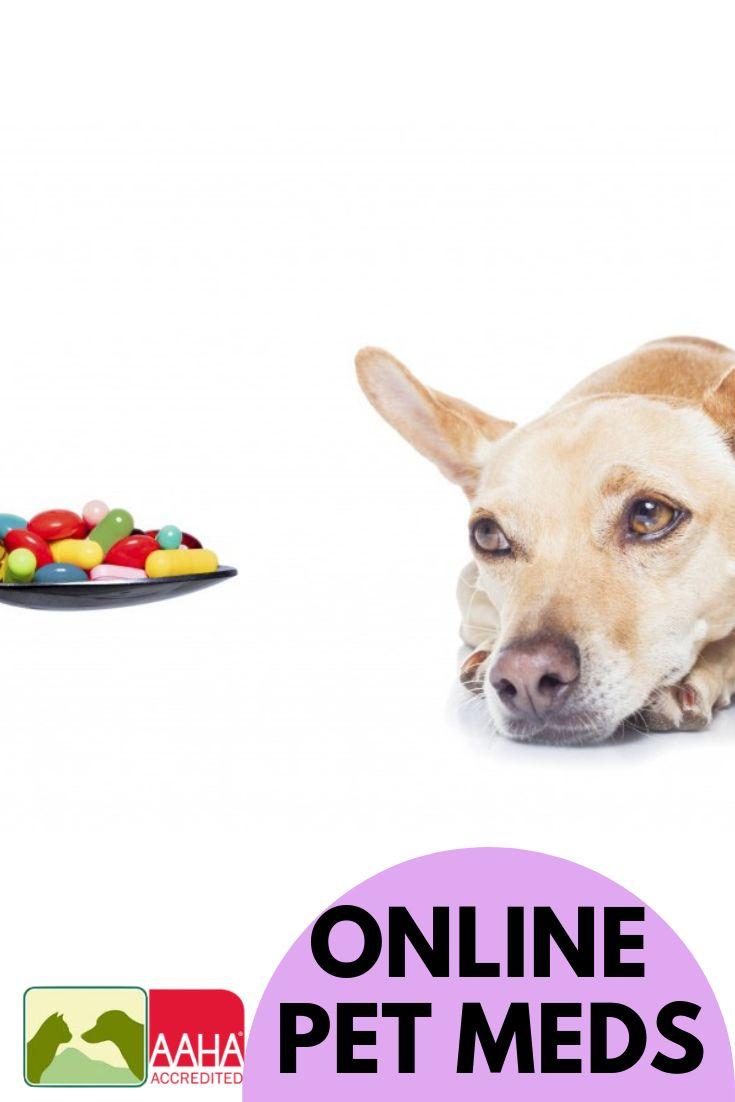 Online Pet Medications Do You Know the Risks Pet meds