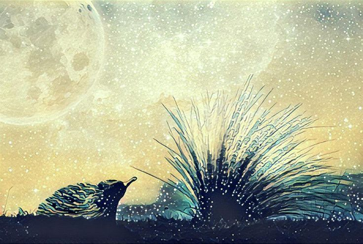 Fantasy illustration artwork - alien landscape of echidna and beach grass flexing in the wind under starry sky and huge planet
