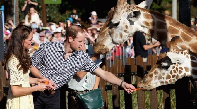 Kado Ultah Pernikahan Kate Middleton dari Pangeran William.