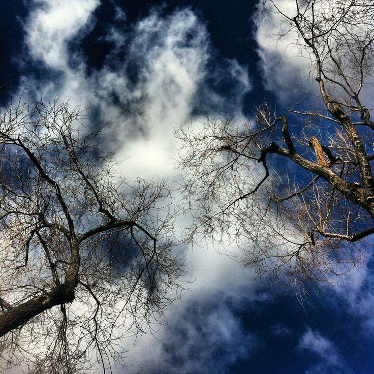 Skies 2  ©Lourdes Pozo