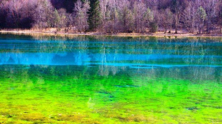 Le Lac des Cinq Fleurs, dans la réserve naturelle de la vallée de Jiuzhaigou (Chine)
