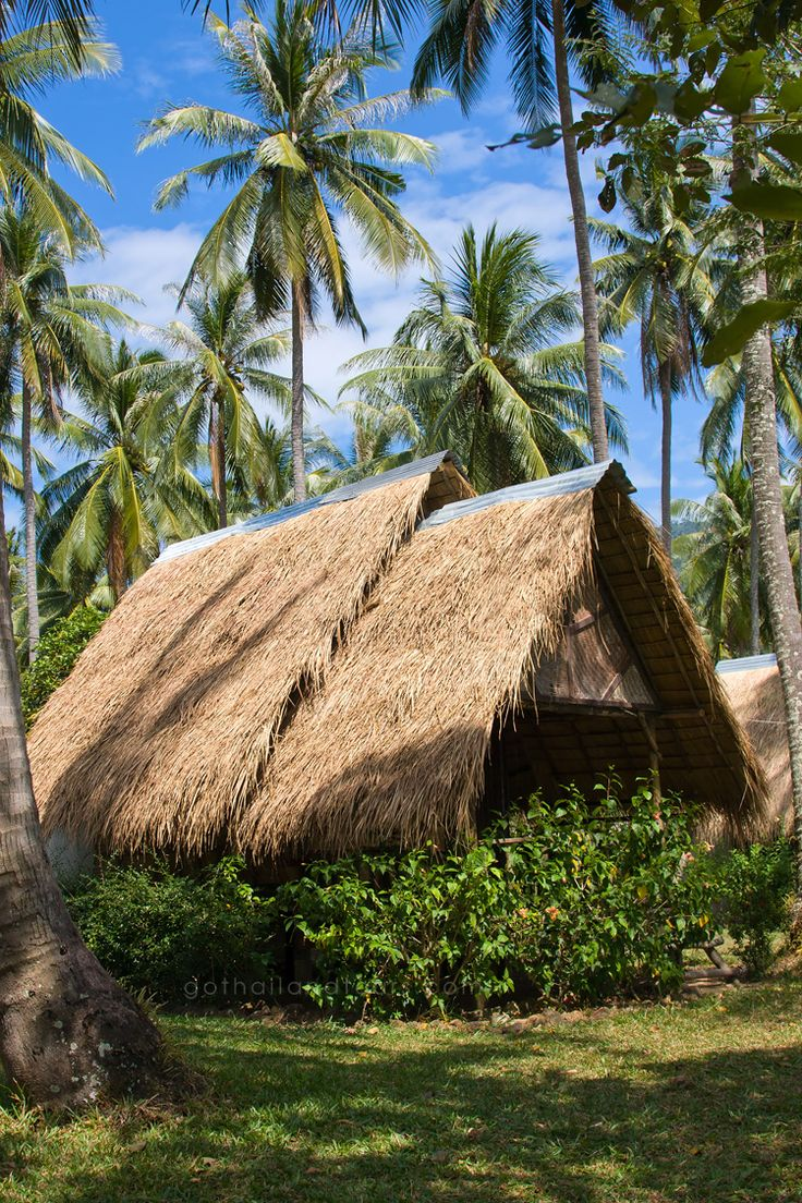 457 best houses tropical images on pinterest | tropical