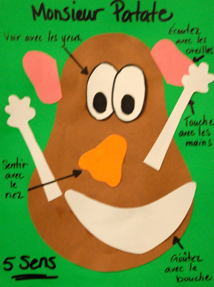 Mr. Potato Head's 5 senses-Monsieur Patate
