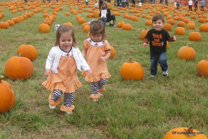 Flower Mound Pumpkin Patch $5 parking, all activities are FREE