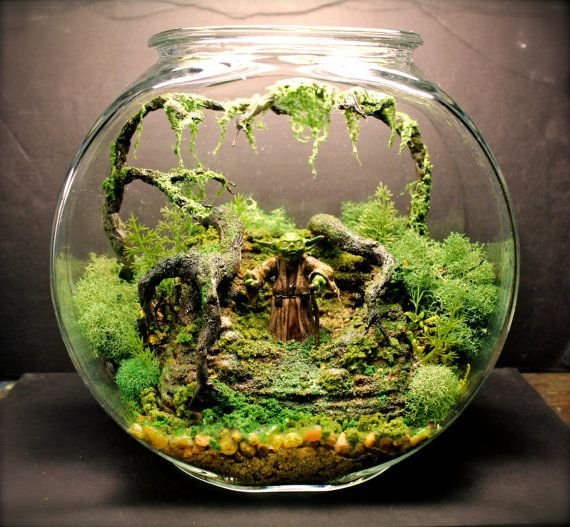 Yoda Bowl Deluxe Zen Garden - Dagobah Terrarium / Diorama on Etsy, $180.82  CAD - 11 Best Terrariums Images On Pinterest Plants, DIY And Crafts