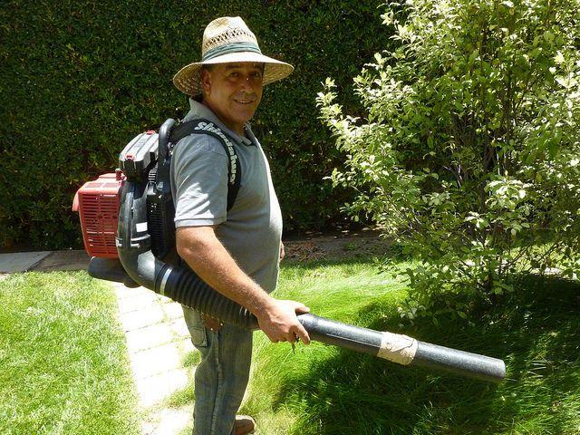Afbeeldingsresultaat voor mexican gardener
