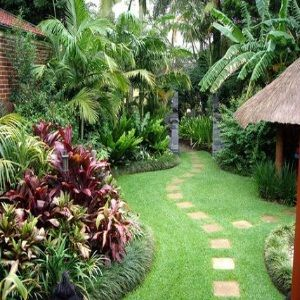 I love the lush tropical look of this backyard.  Doesn't look like it would be much maintenance once it's all planted.