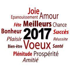 2017 - Bonne année