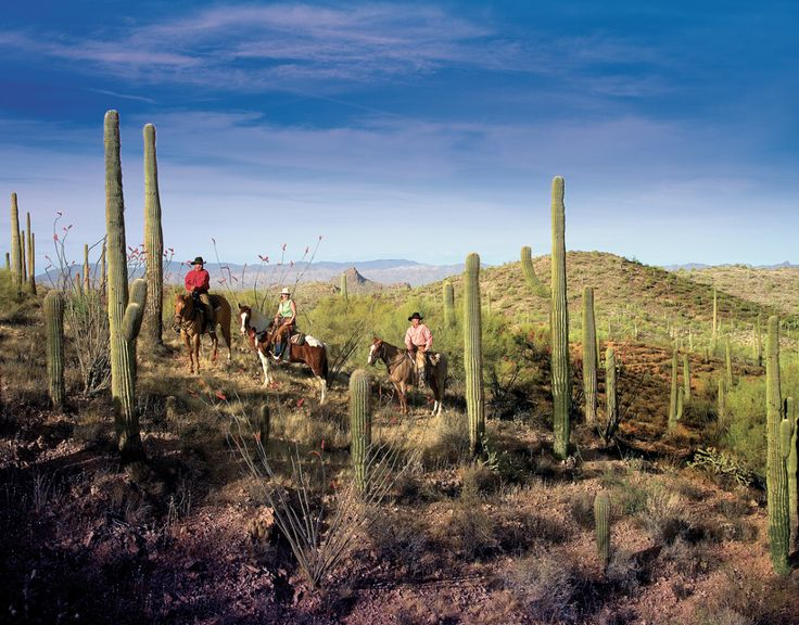 "The mission of the Sonoran Desert ranch is simple: keep the tradition of the Spanish caballeros (""gentlemen on horseback"") going."