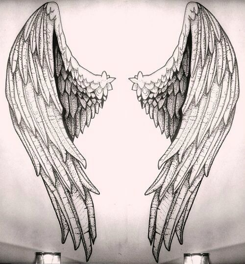 angel, sketch, and wings image