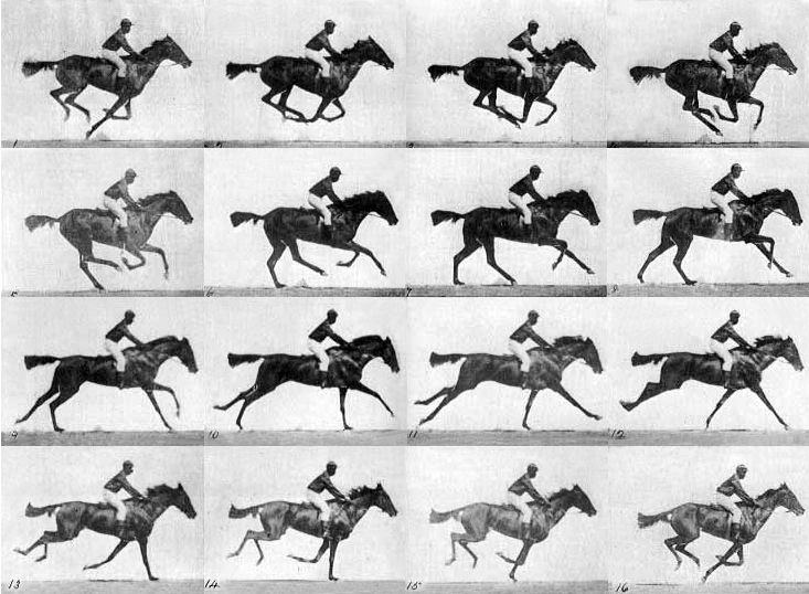 Eadweard Muybridge's The Horse in Motion 1878.  The first use of photography to show motion.
