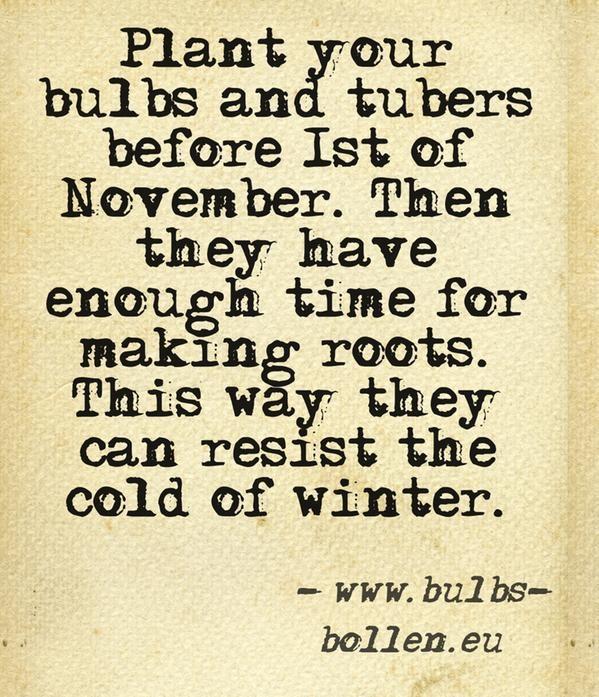 November 1st Quotes. QuotesGram